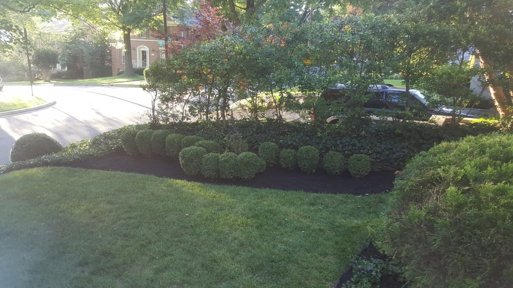A front yard with black-dyed Bulk Mulch