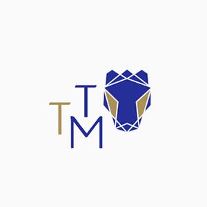 TTM1.png