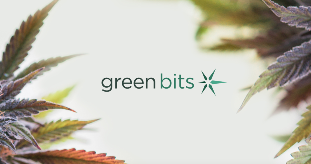 Green Bits  corporate rebrand & strategy  /  messaging  /  interactive  /  print  /  art direction