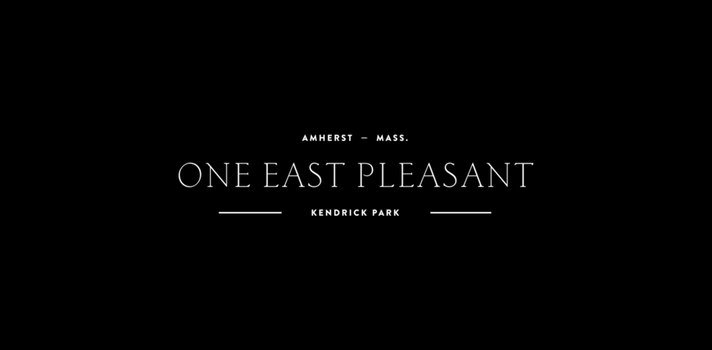 The_Beauty_Shop_One_East_Pleasant_Amherst_Logo.png