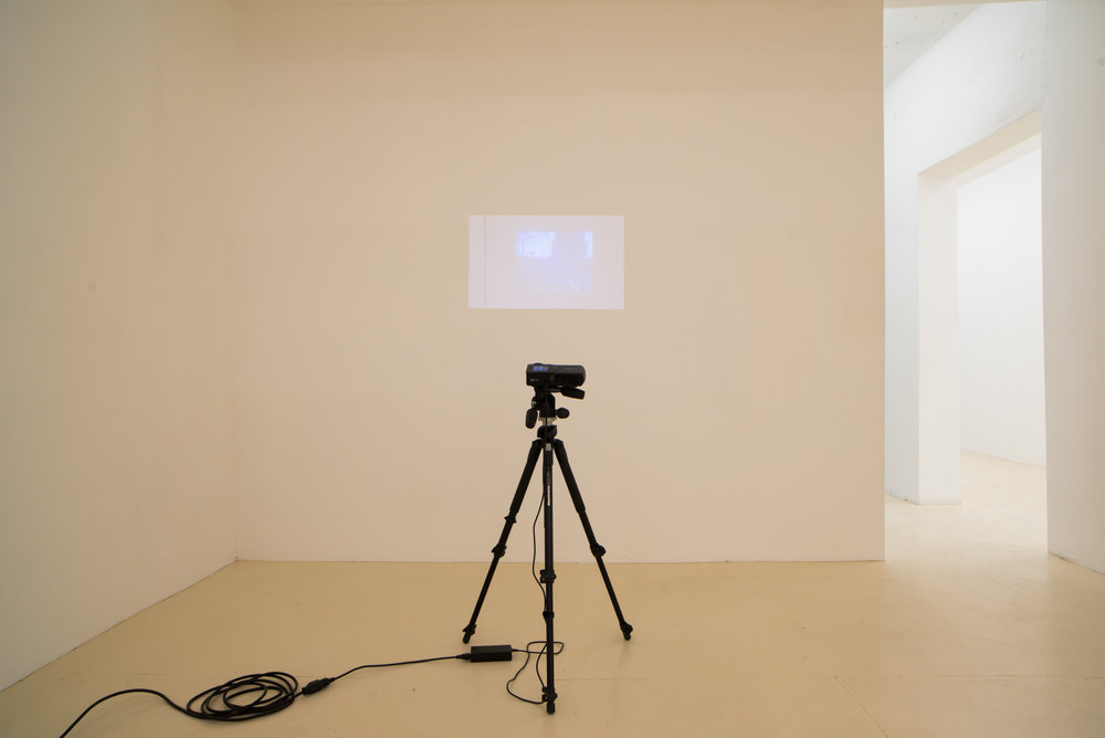 Place/Image/Object , Anna Plesset,  Document of a Travelogue by Lt. Col. Marvin R. Plesset, Division Neuropsychiatrist , 2013, HD video, 24 minutes, Exhibition View, Courtesy Jack Barrett, New York, 2019