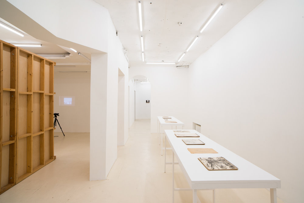 Place/Image/Object , Anna Plesset, Fred Terna, and Daniel Terna, Exhibition View, Courtesy Jack Barrett, New York, 2019