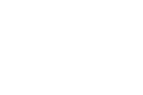 Thai and Lao Food in Edmonton | Syphay Restaurant