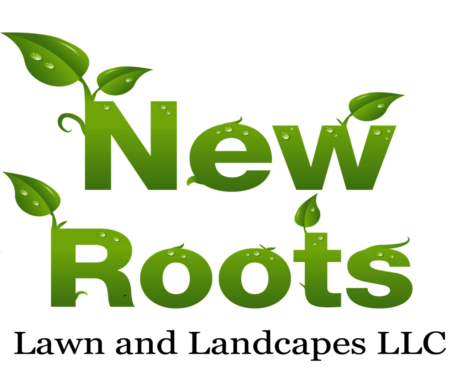 New Roots Lawn and Landscapes