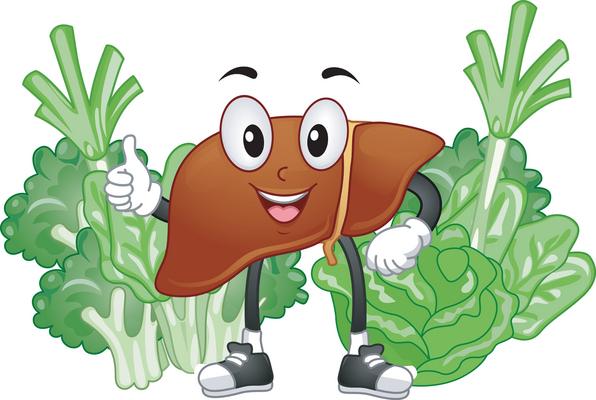 Liver - Veggie (Med).jpg