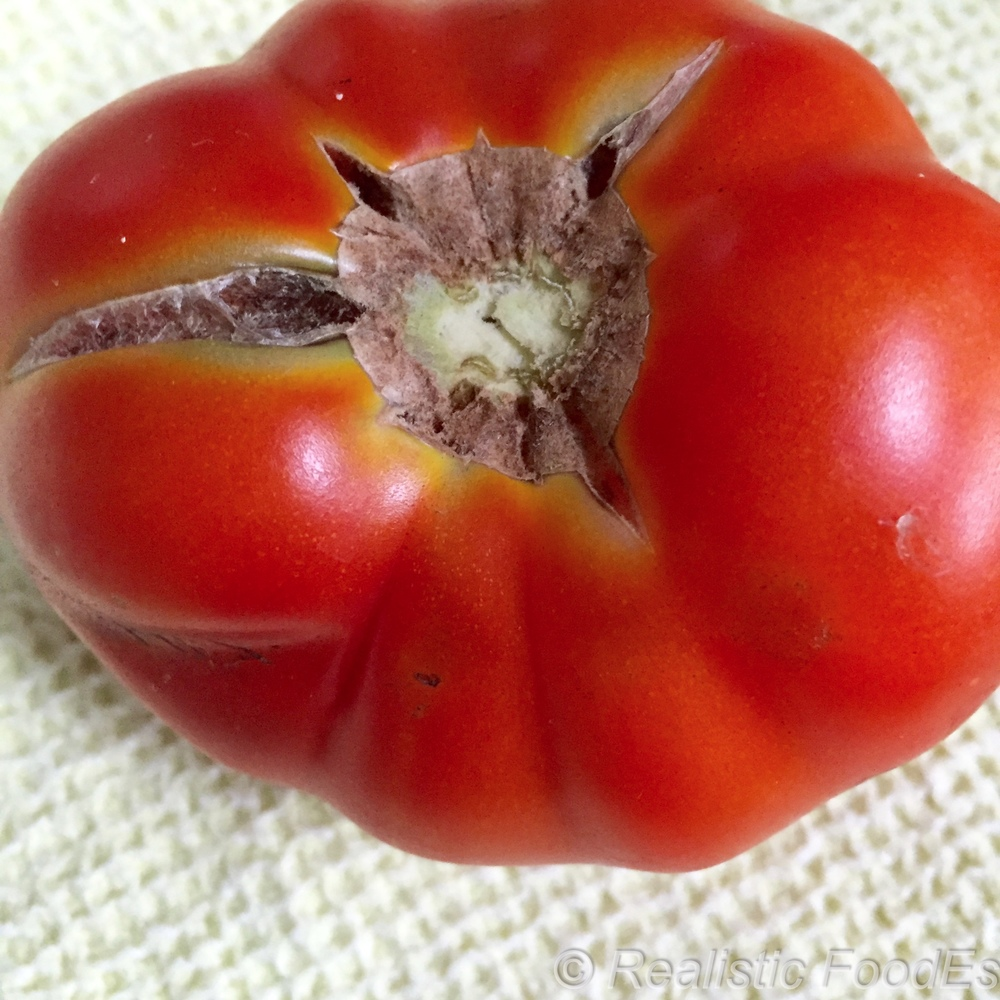 First Tomatoes 01 07282016.jpg
