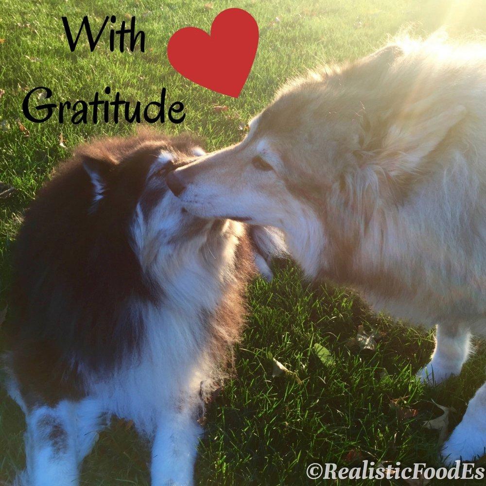 With Gratitude 11222016.jpg