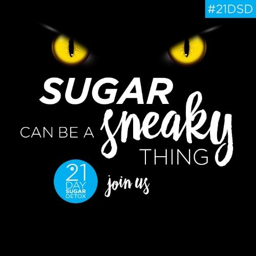 Sneaky Sugar Cat Eyes (Square).jpg