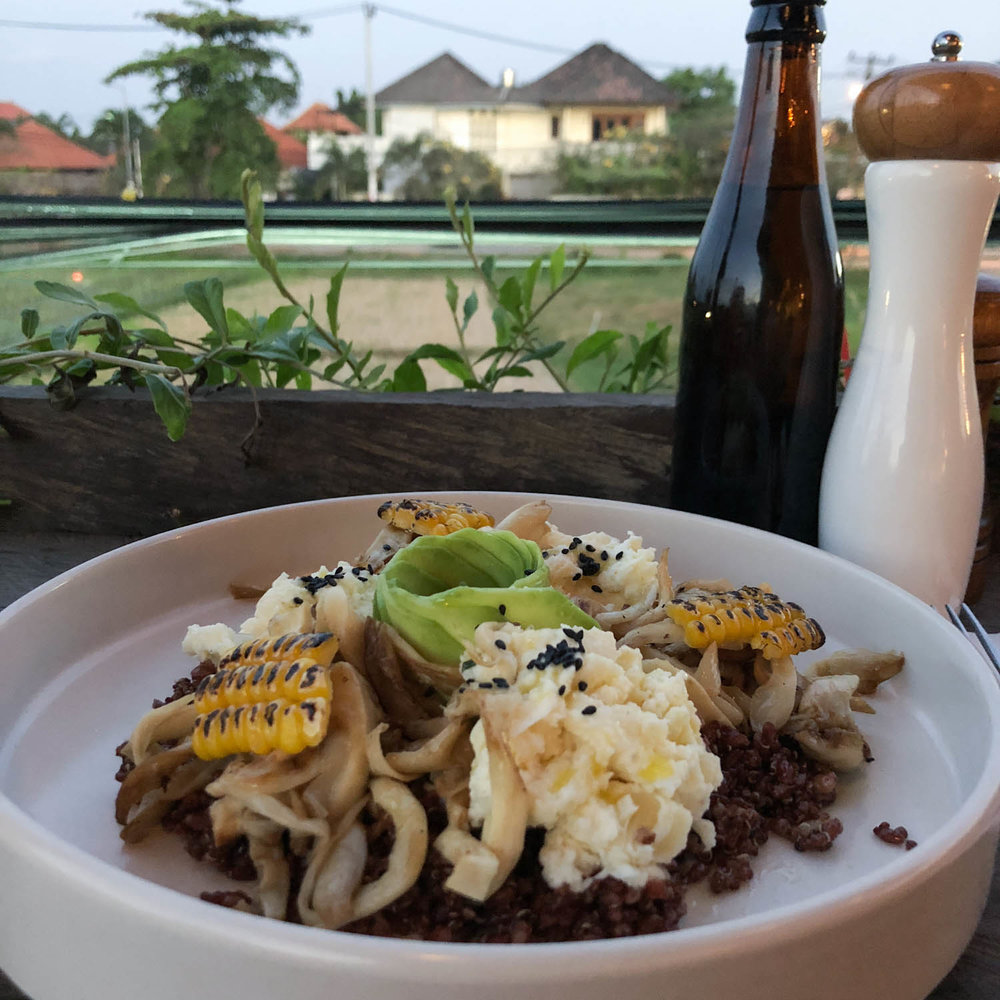 You can't beat the food in Bali! It is the land of all things organic and even the vegan food is insanely delicious. This is a yummy dish from the Avocado Factory in Canggu, which overlooks a rice field.