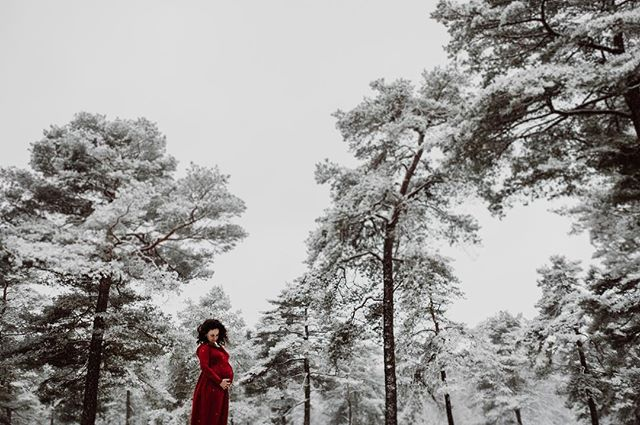 Something else today... Winter hits Holland this afernoon. Time to explore this amazing winter wonderland. I was with Mirela, she is expecting two new humans. #twins #humanlife #snow