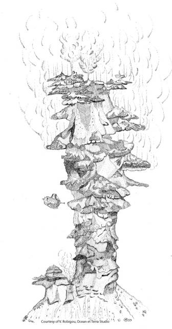 Véronique's illustration of the Godzilla Vent. Note the submersable that she drew from located on the left hand side of the illustration. Retrieved from   marine-geo.org