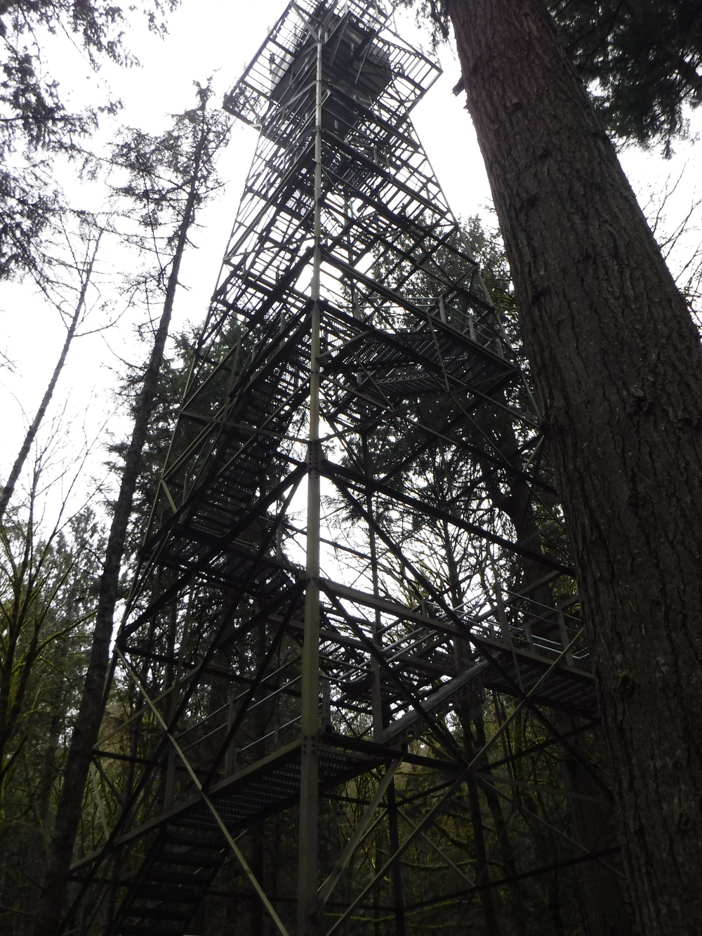 200 foot canopy tower.