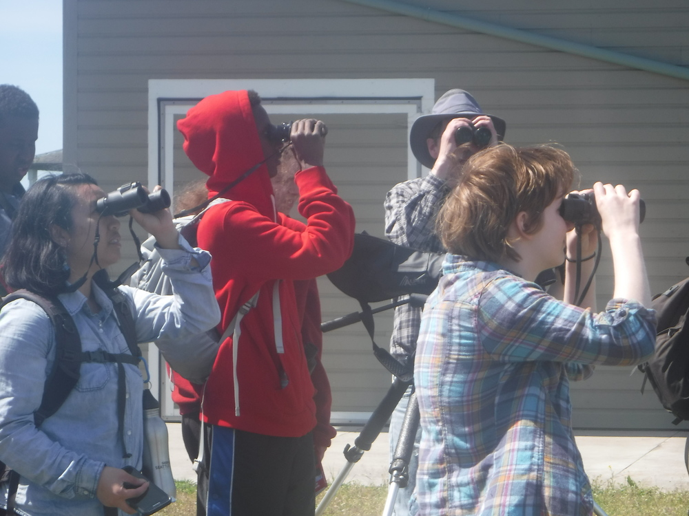 Students watching birds from every angle!