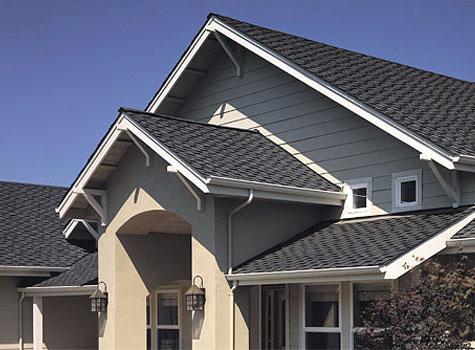 Roofin 2.jpg