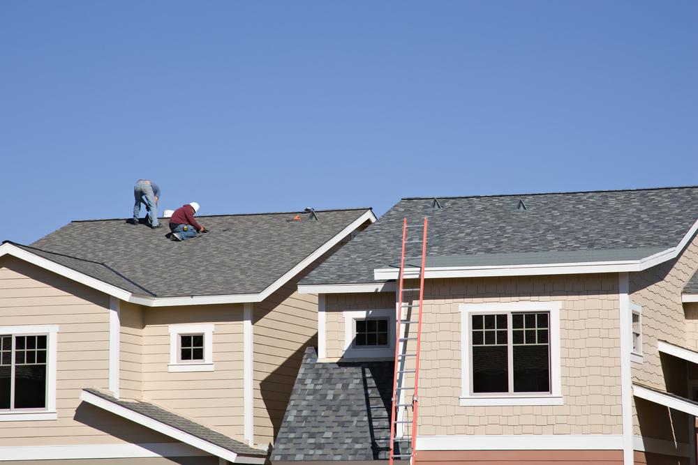 1oak_roof01.jpg