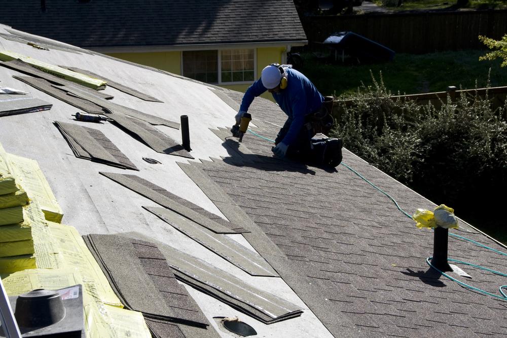 1oak_roof02.jpg