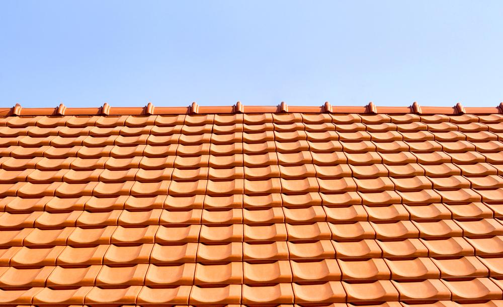 1oak_roof03.jpg