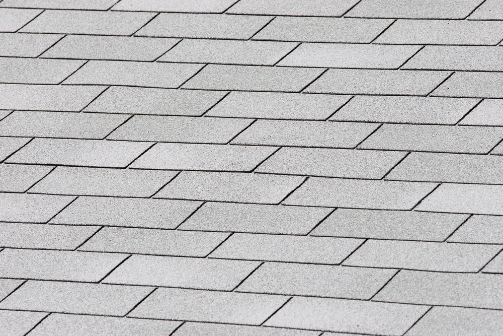 1oak_roof05.jpg