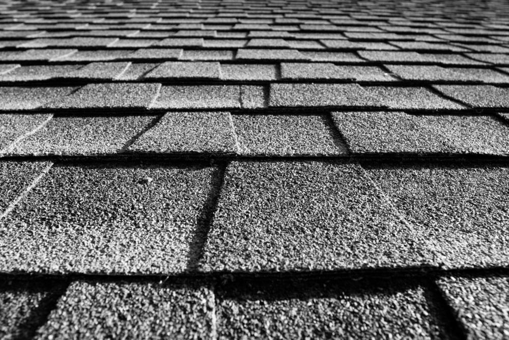1oak_roof10.jpg