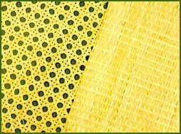 Sheet Cane Or Rattan Webbing And Woven Cane