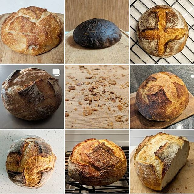 I've been having fun baking naturally leavened sourdough bread. I finally got around to making a baking journal: @moreloaves  Let me know if you want a loaf. 🌾✨
