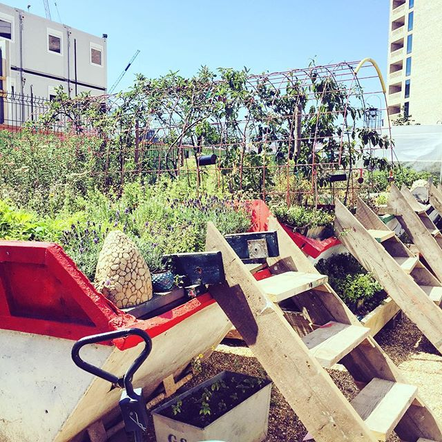 Sunshine and skips! Taking five at lunch and having a venture round the #skipgarden for a bit or inspiration  #london #creativeprojects #architecture #design #interiordesign #branding #experiences #experiential #property #designers #creative