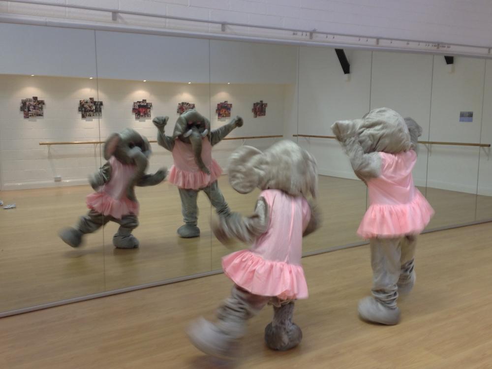 Clonskeagh Dance Studio Elephants.jpg
