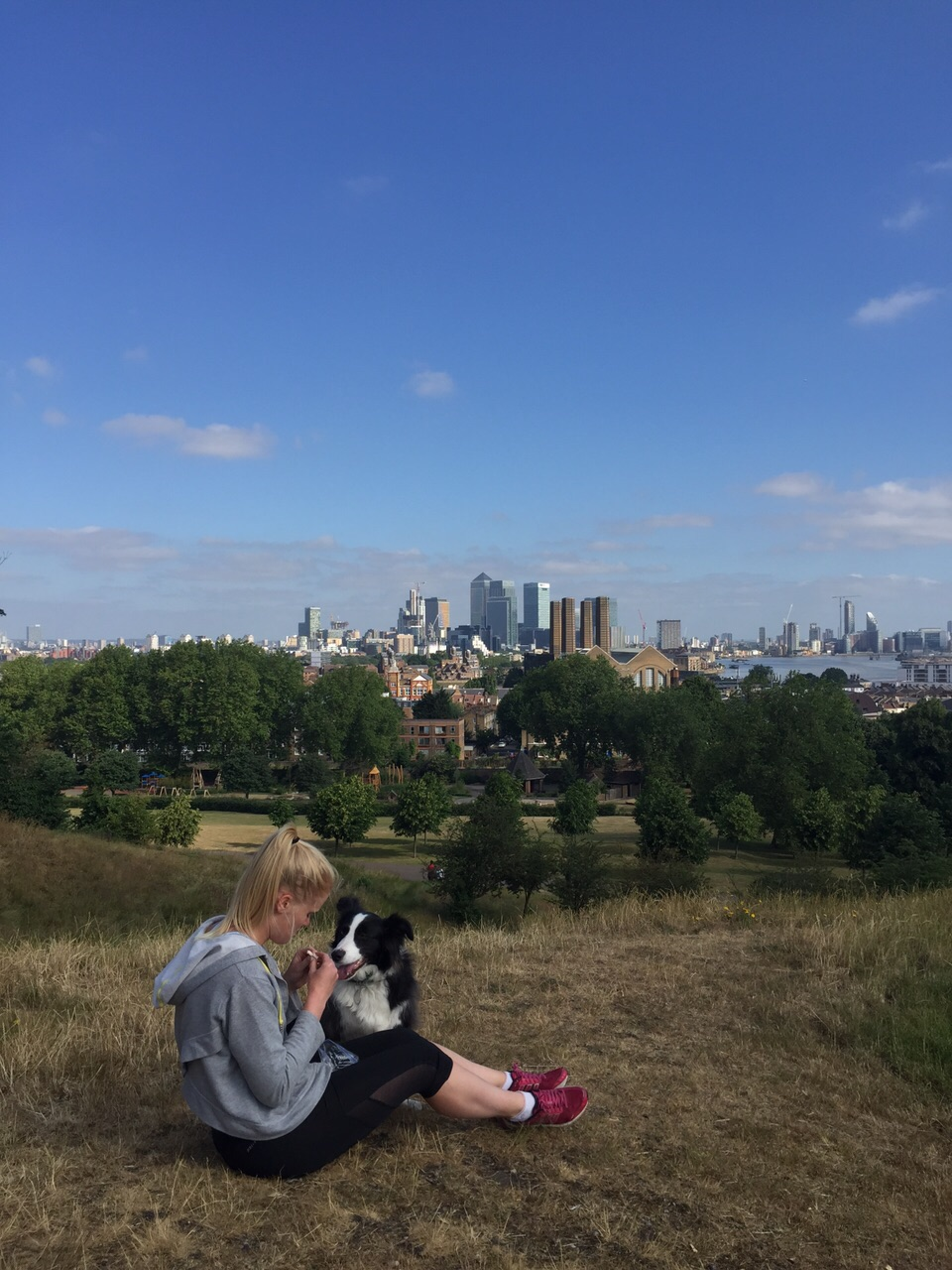 What a view! Greenwich Park, London