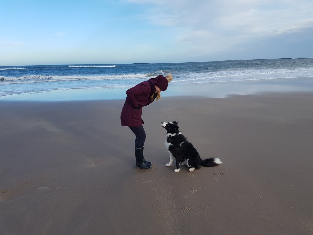 Bamburgh Beach with Gatsby wearing Tog 24