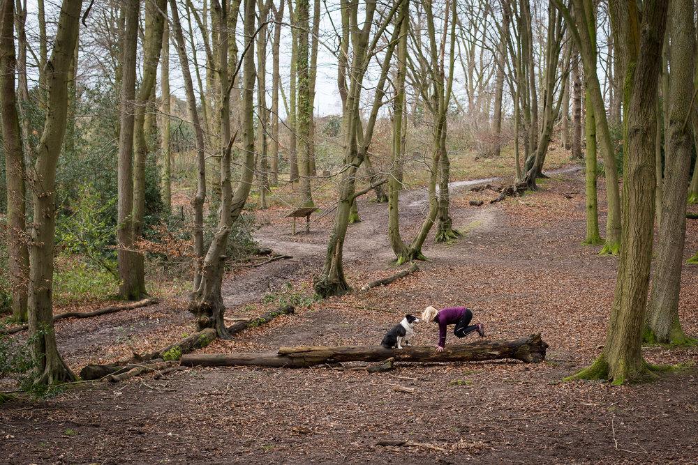 LucyandGatsby-Scenic View 2.jpg