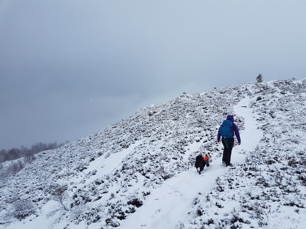 Aviemore in the Mountains.jpg