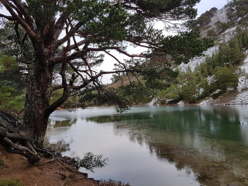 Loch Uaine.jpg