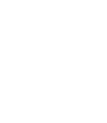 Perception Cyber Security
