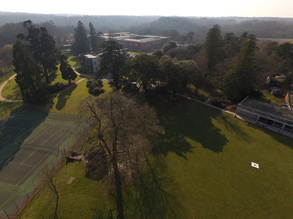 Site - drone pavilion.JPG