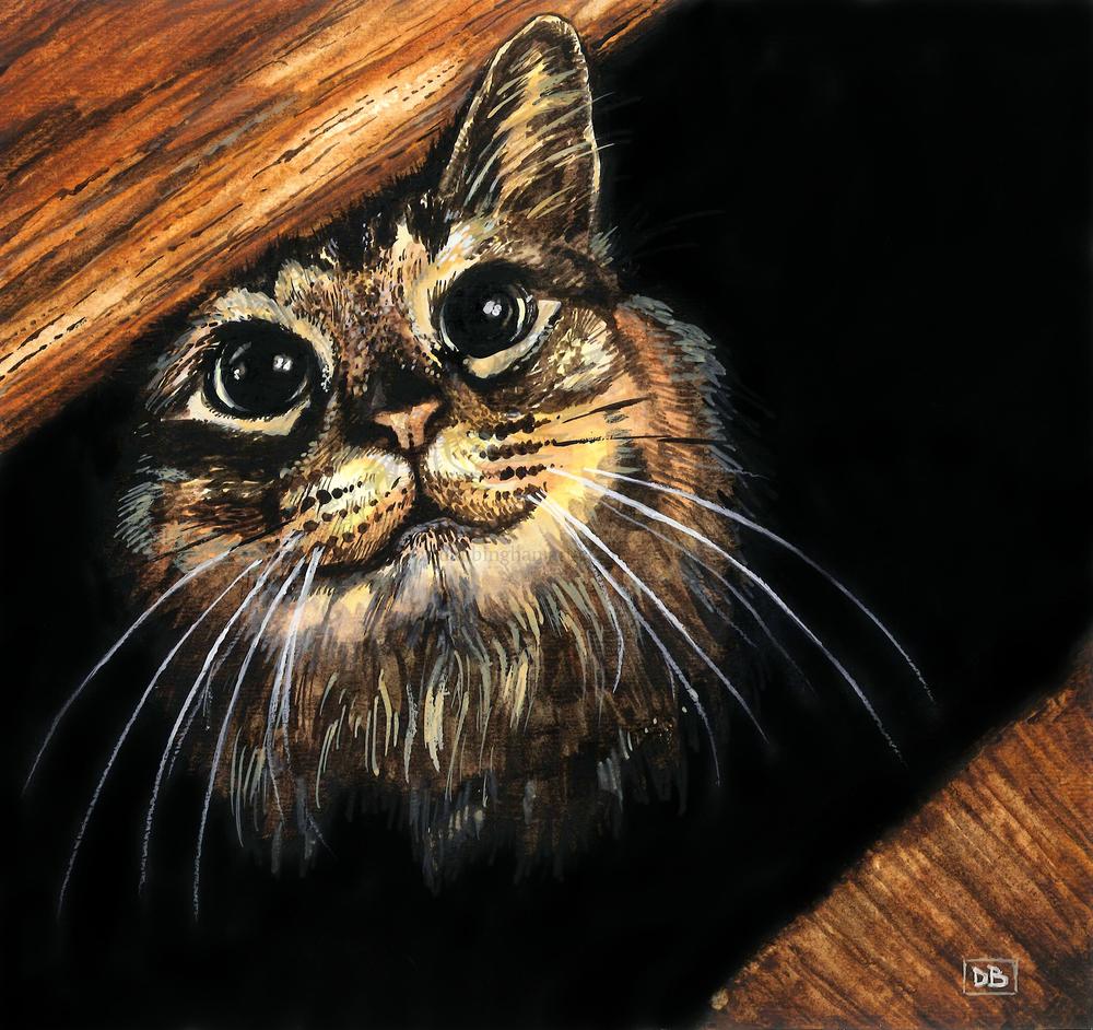 Riley (Cat Portrait)
