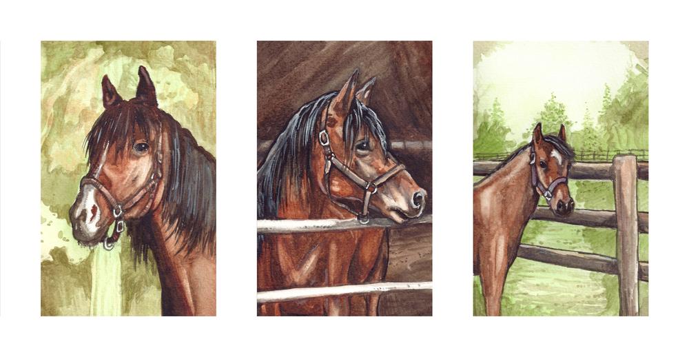 Horse Triptych Portrait