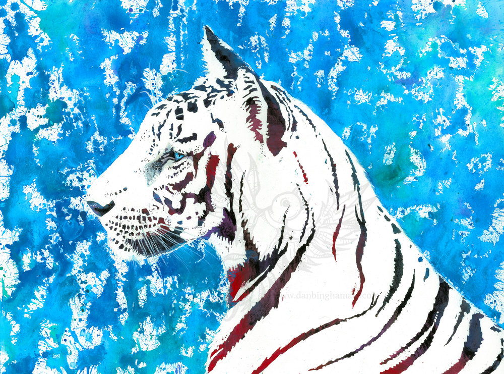 Tiger (Splash)