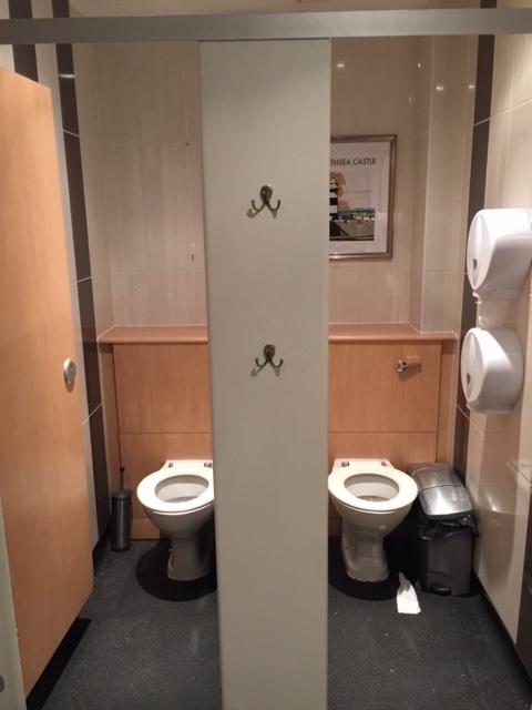 twin toilet.jpg