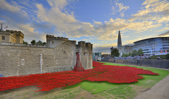 """""""The Blood Swept Lands And Seas of Red exhibition, by artist Paul Cummins, involves 888,246 ceramic poppies planted in the dry moat at the Tower.A poppy has been made for each British and Colonial death during the conflict.The final one due to be installed on Armistice Day."""" Photo by Martin Pettitt."""