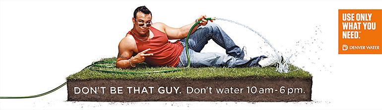 den-water3.jpg