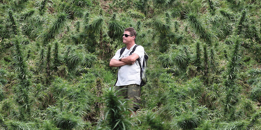 Slang Worldwide hopes to corner the U.S. marijuana market as more states legalize it.