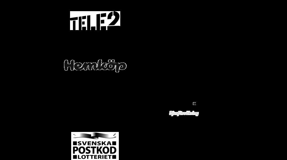 Logotypgrid (2) (1).png