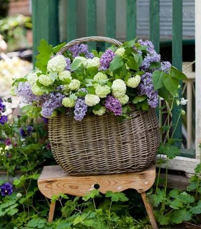 viburnum spring arrangement
