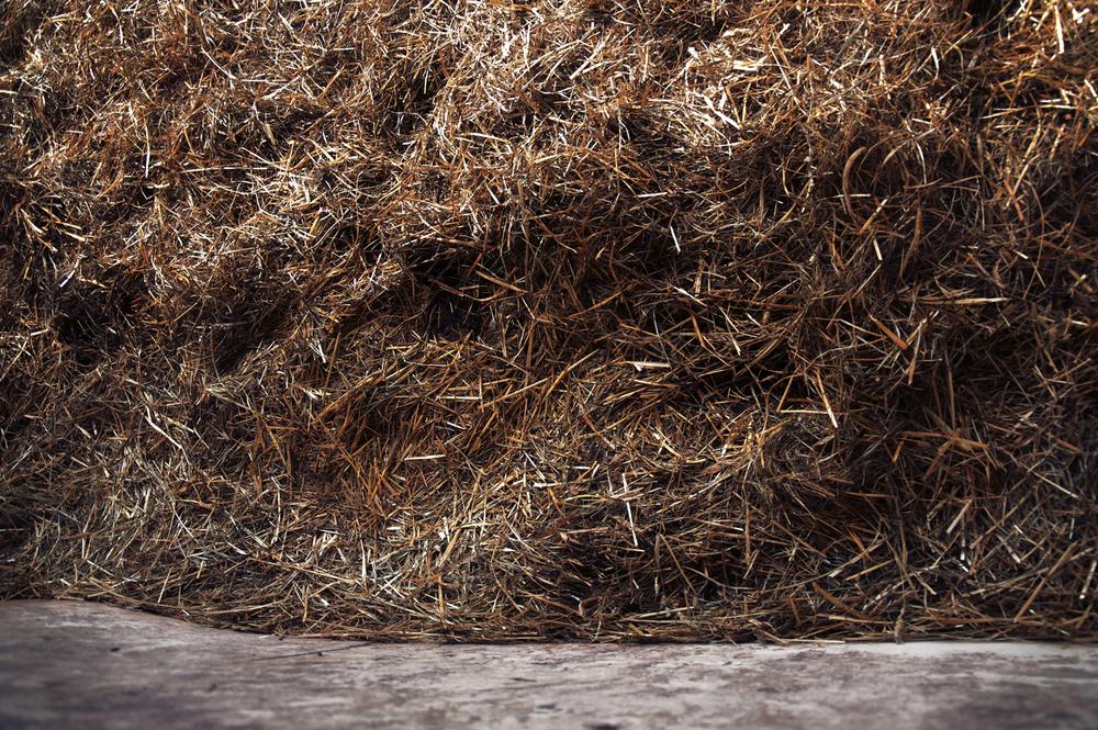 haystack.jpg