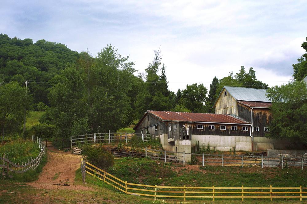 rosemary_barn.jpg