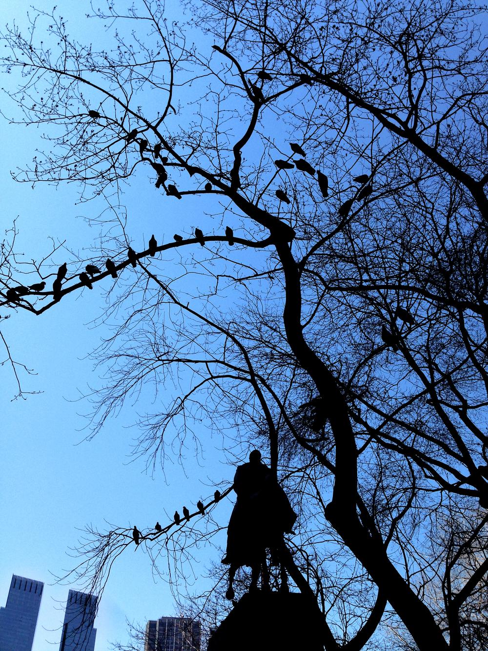 statue_birds.jpg