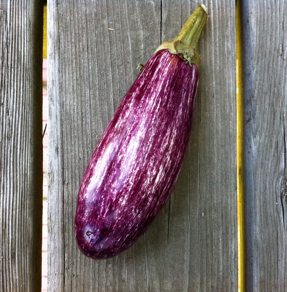 grafitti eggplant on wood