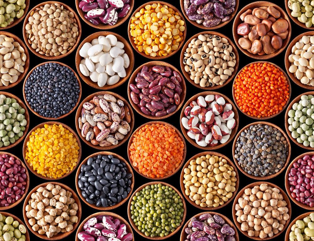 1 lb Bean Share- $3.50