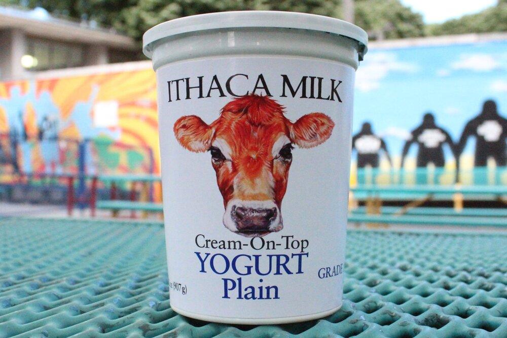 1 qt. Ithaca Milk Yogurt- $6