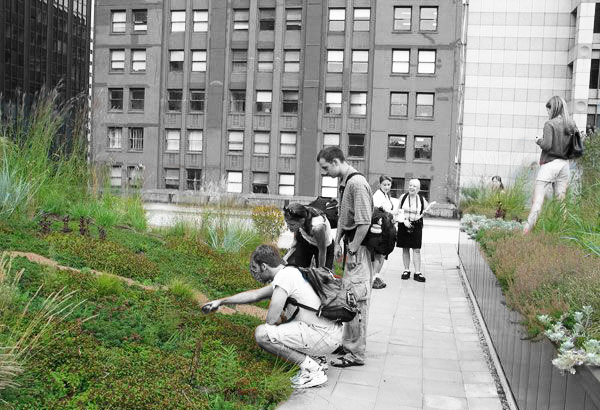 LA 5204: Metropolitan Landscape Ecology   Design studio experience drawing on ecological, cultural, aesthetic influences to explore development of design ideas responsive to ecological issues and human experience.   Learn more